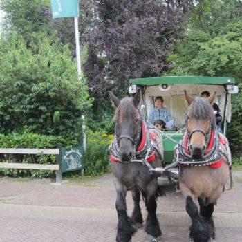 Paard en wagen bij de Broeksehoeve
